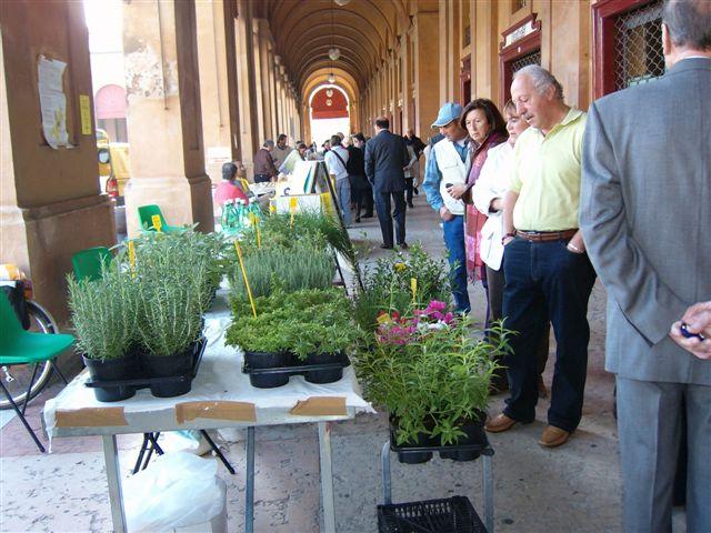 Bio Mercato a Lugo (Ravenna)