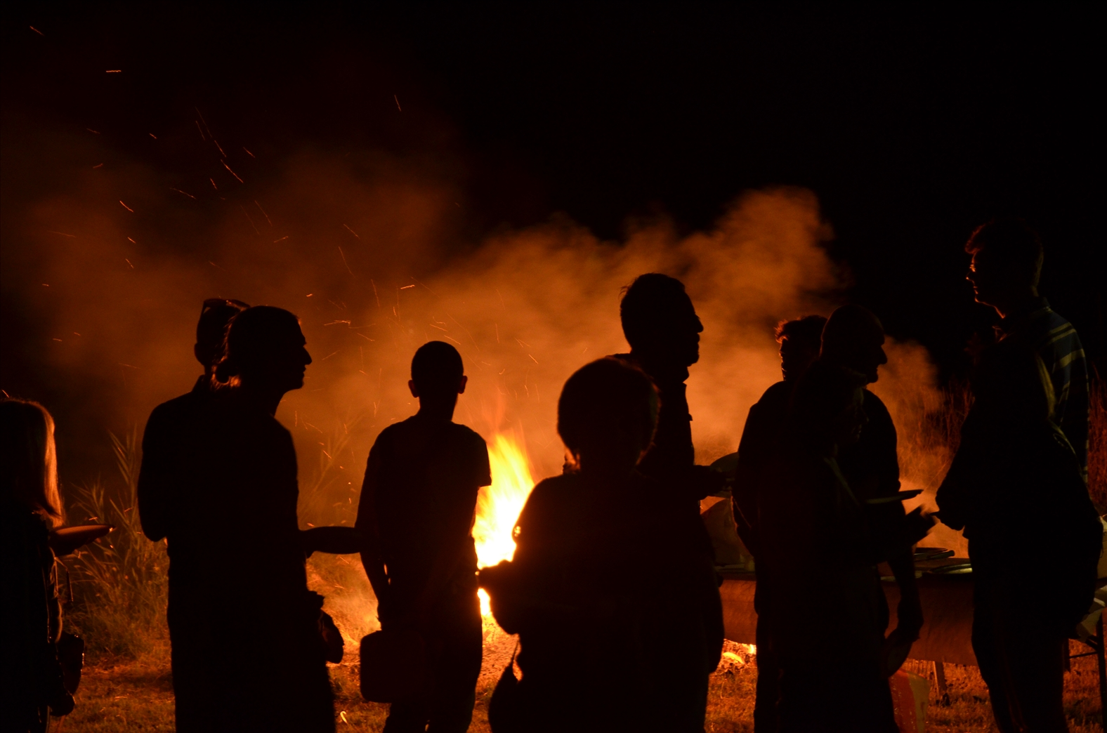 Festa Orto 2014 (4)