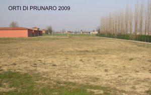 ARTICOLO orto 2009